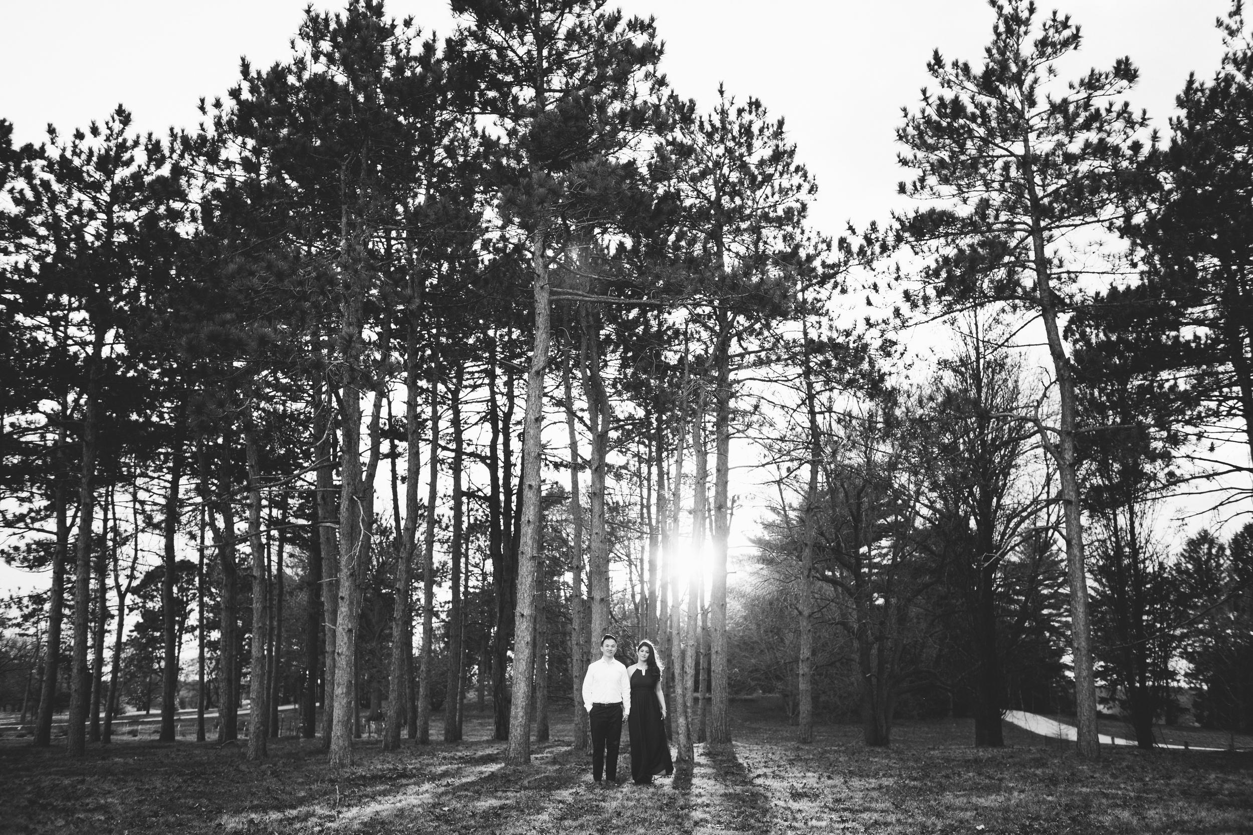 Nicodem Creative_Leung Engagement_Morton Arboretum-13.jpg