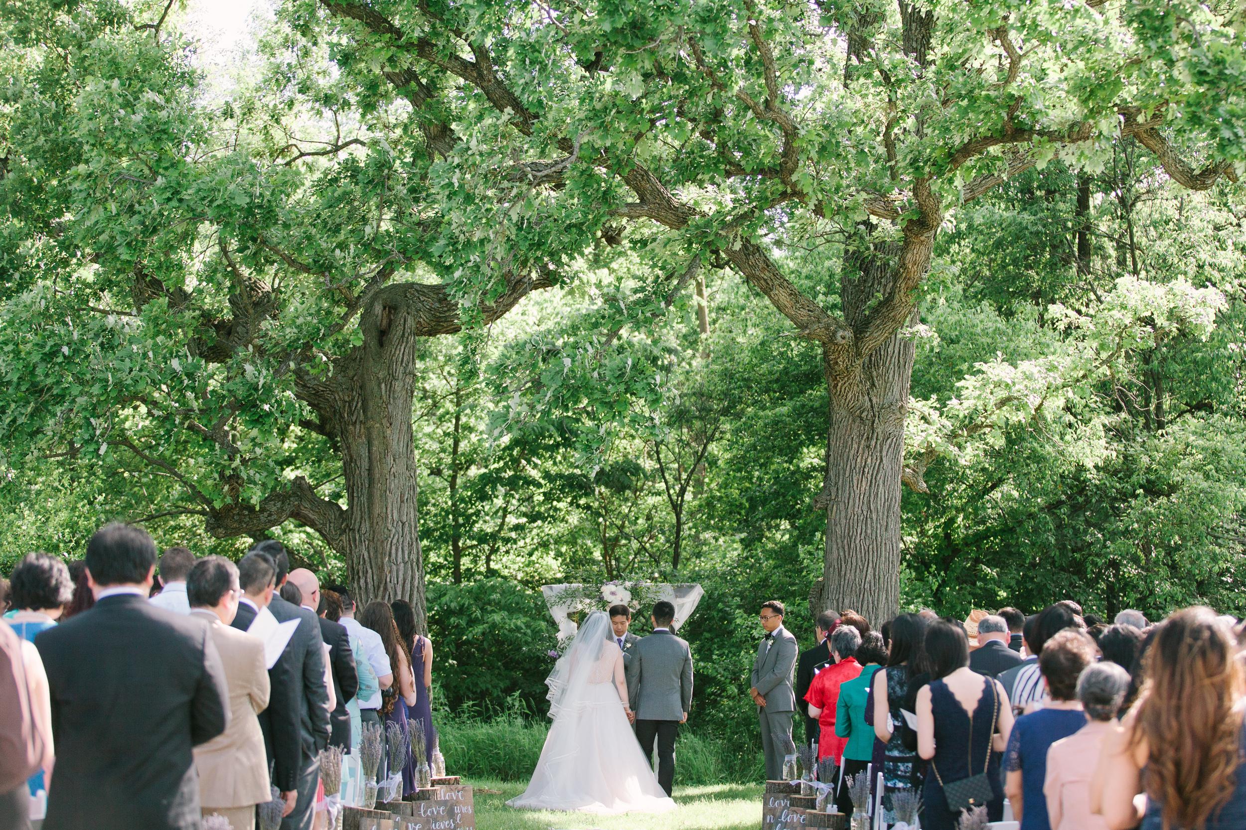 Nicodem Creative_Blog_Leung Wedding_The Pavilion at Orchad Ridge Farms_Rockton Illinois-31.jpg