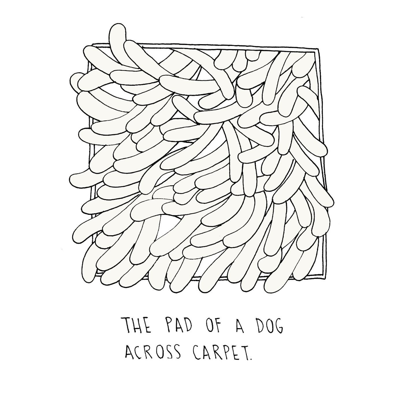 pad of carpet.jpg