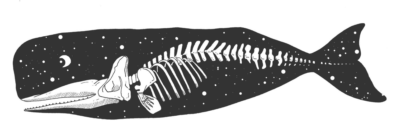 whale+space.jpg