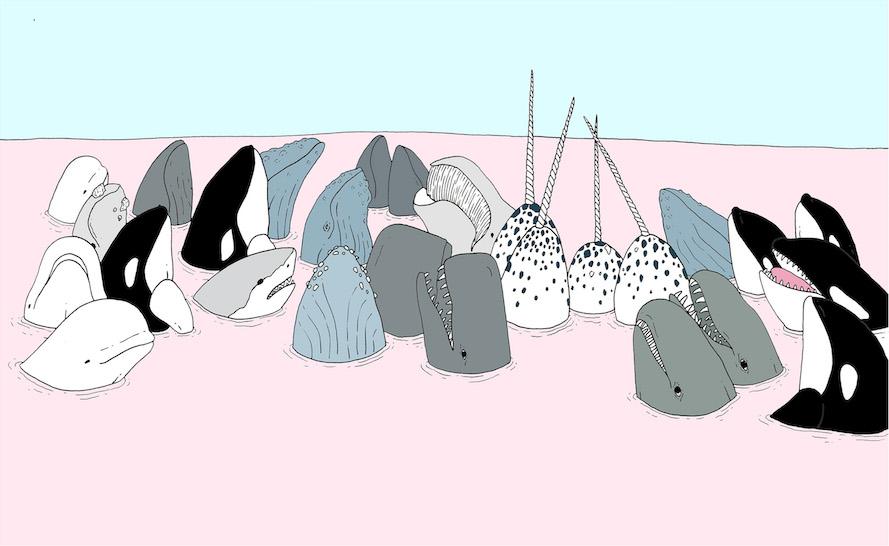 Whales Gottlieb.jpeg