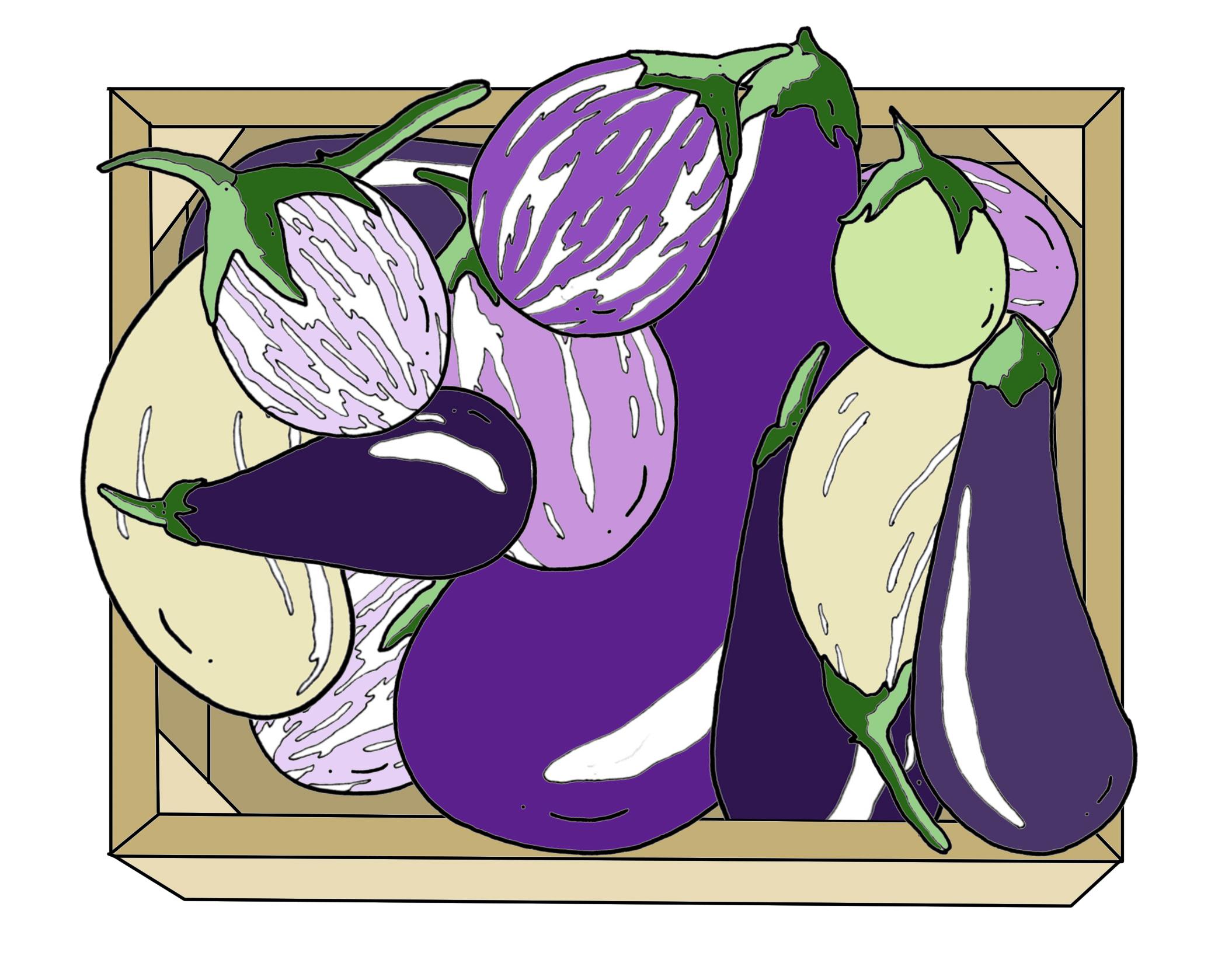 Eggplants in box edit.jpg