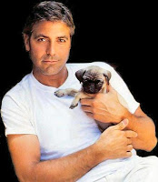 It's George Clooney. With a pug.  Cue swooning.