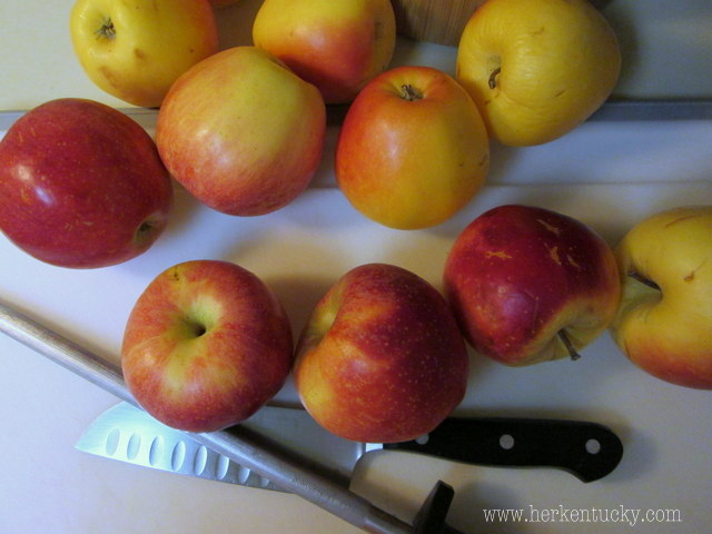Gala and Pixie Crisp apples from Reed Valley Orchard