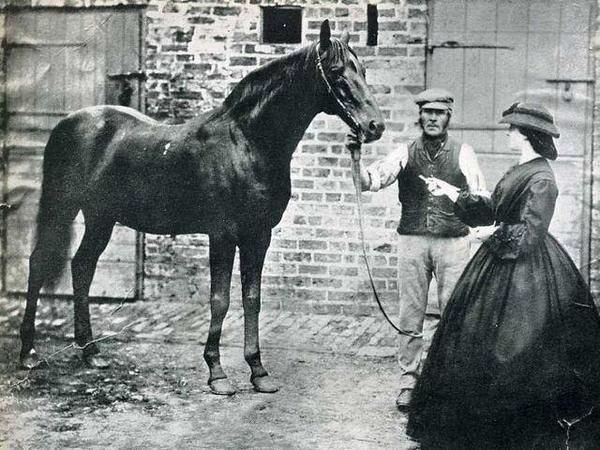 Voltigeur, winner of the 1850 Epsom Derby.