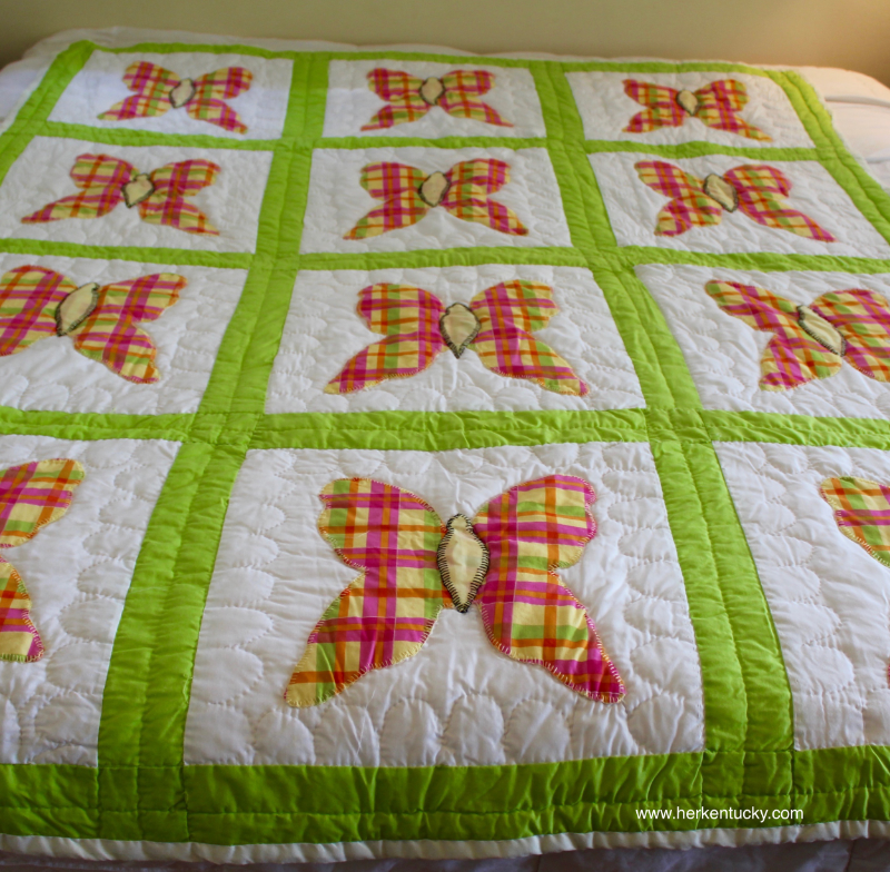 Pink and Green Plaid Butterfly Quilt