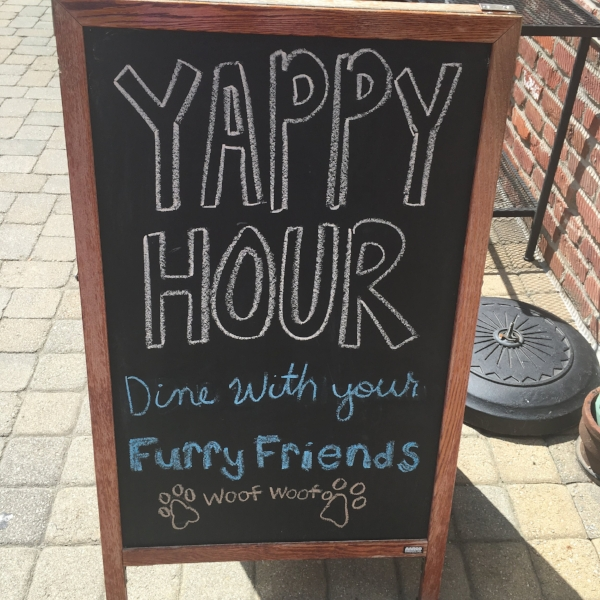 Coals Pizza  in St Matthews hosts a Yappy Hour on their patio every Wednesday!
