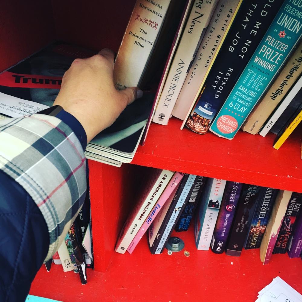 HerKentucky Little Free Library