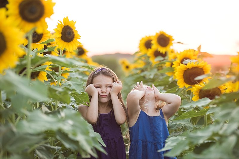 Knob Noster Child Photography Sunflowers_0005.jpg
