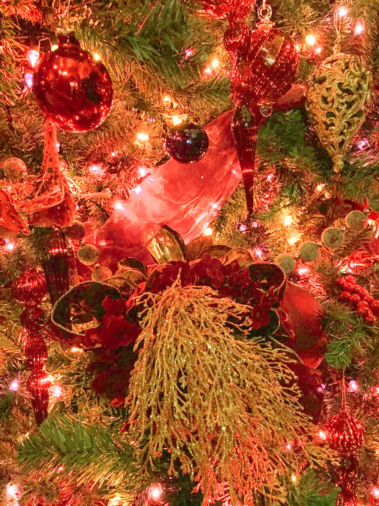 ChristmasTree21-KJ.jpg