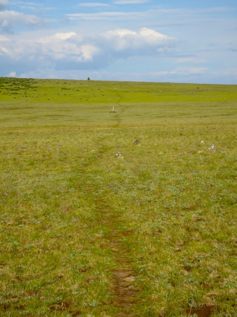 """Define """"trail"""", #1. A green path across a 12,000' mesa, following cairns across the increasingly rocky top. This is actually way more visible than normal, as there had been several riders through before me."""