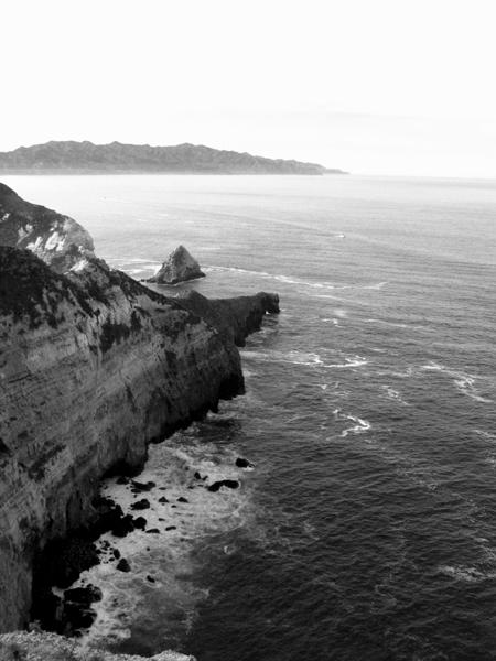 On Santa Cruz Island near Potato Harbor