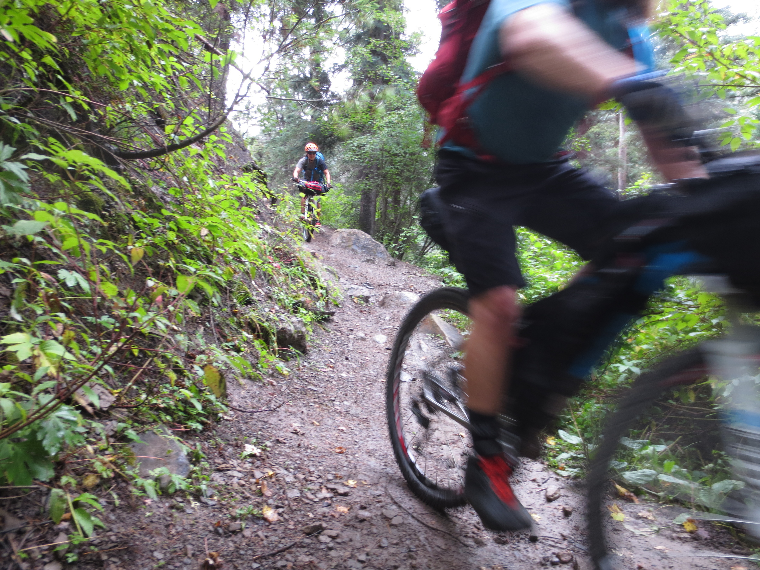 The trail was damp and slippery, and all the leaves overhanging the trail left water on us as we passed by. I love riding Hermosa in these conditions - lots of fun, and no dust. Here, Ashley and Brian speed by.