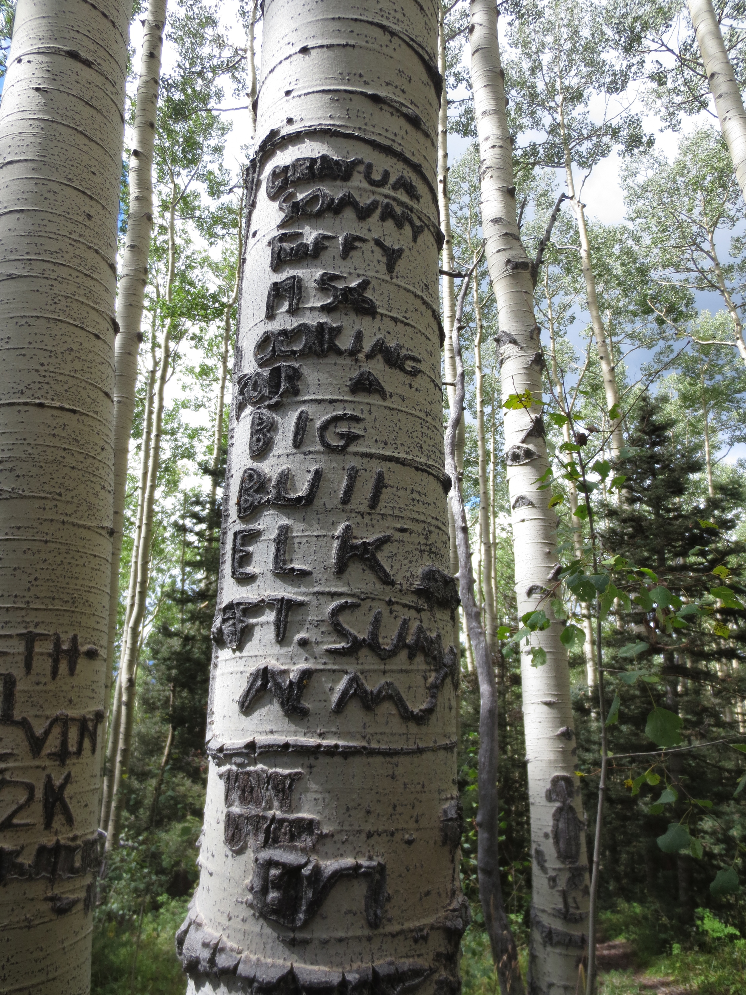 This carving is from 1956 and is apparently from some fellers looking for elk. Some things just don't change.