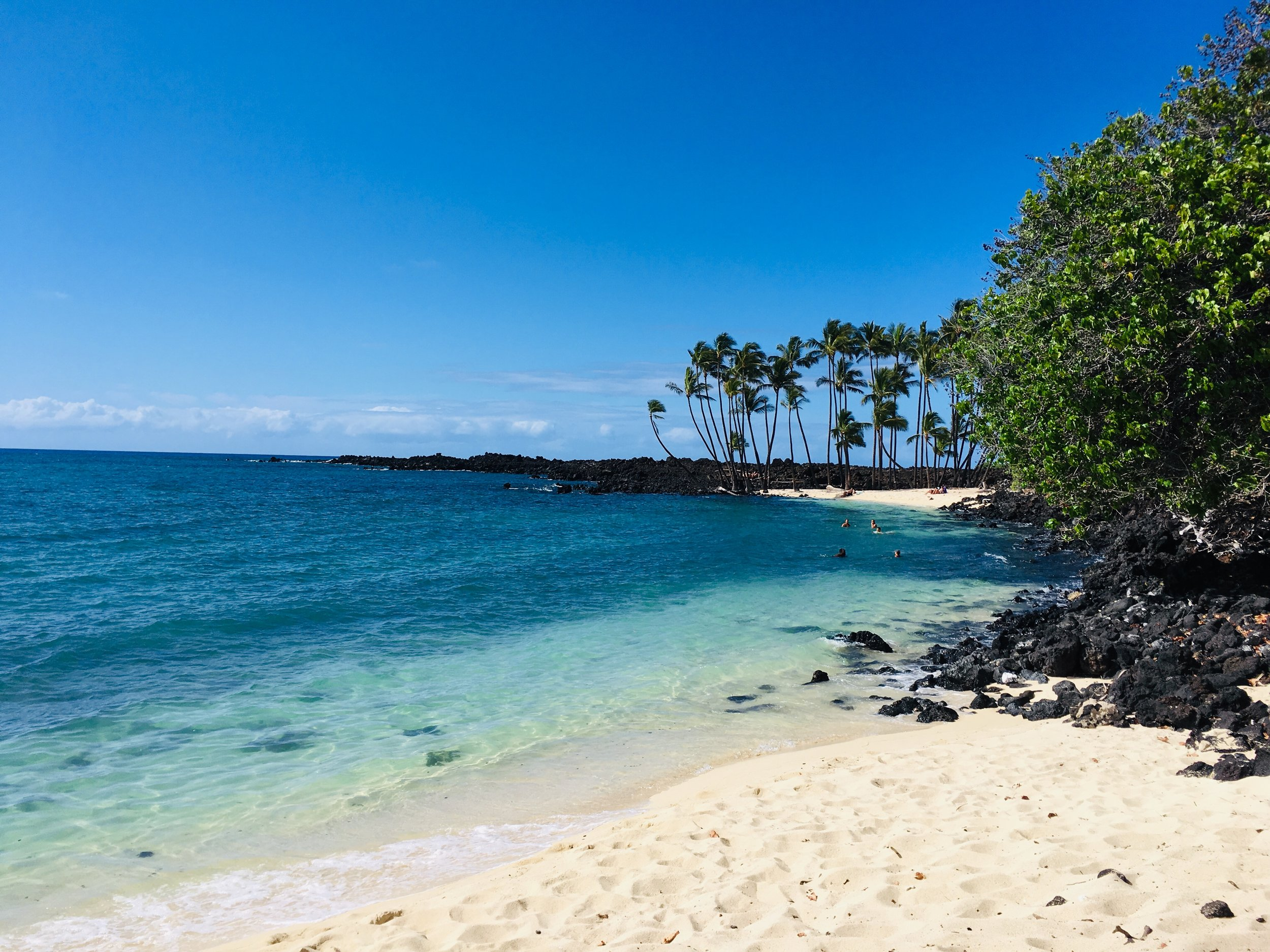 Aloha, Travelers - Visiting the Big Island? We enjoy hosting BJJ practitioners from around the world at our Academy in Beautiful Kailua-Kona, Hawaii.COME ROLL WITH US >>