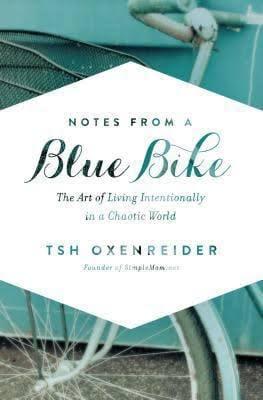 blue bike.jpeg