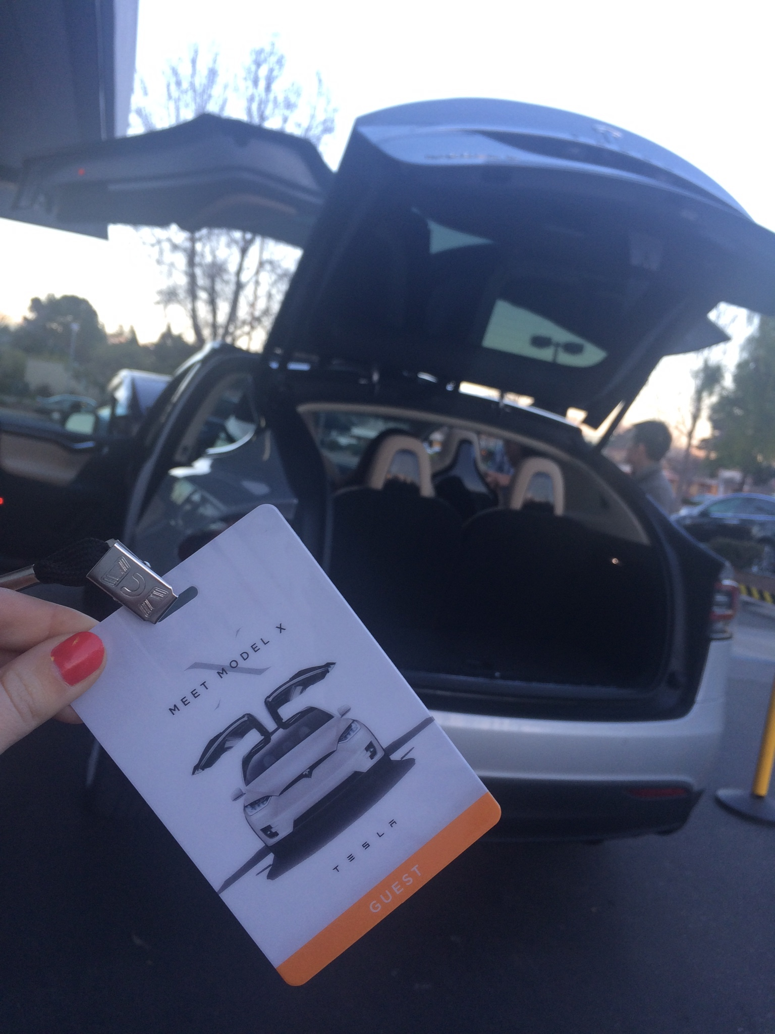 IT'S ELECTRIC! Test-driving a  Tesla  car...