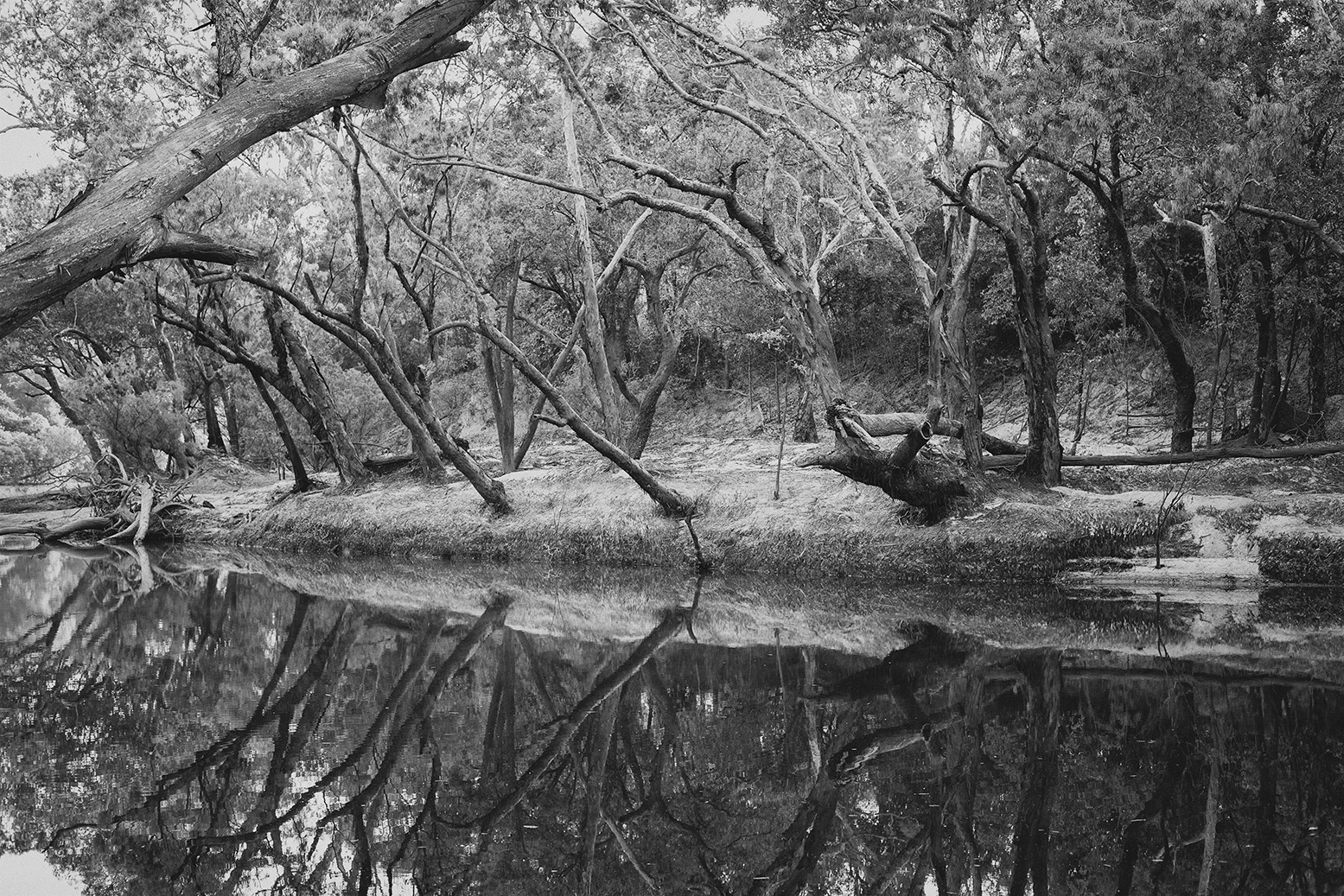 The Wenlock River, Boulder Bend, Steve Irwin Wildlife Reserve.             photography : Russell Shakespeare