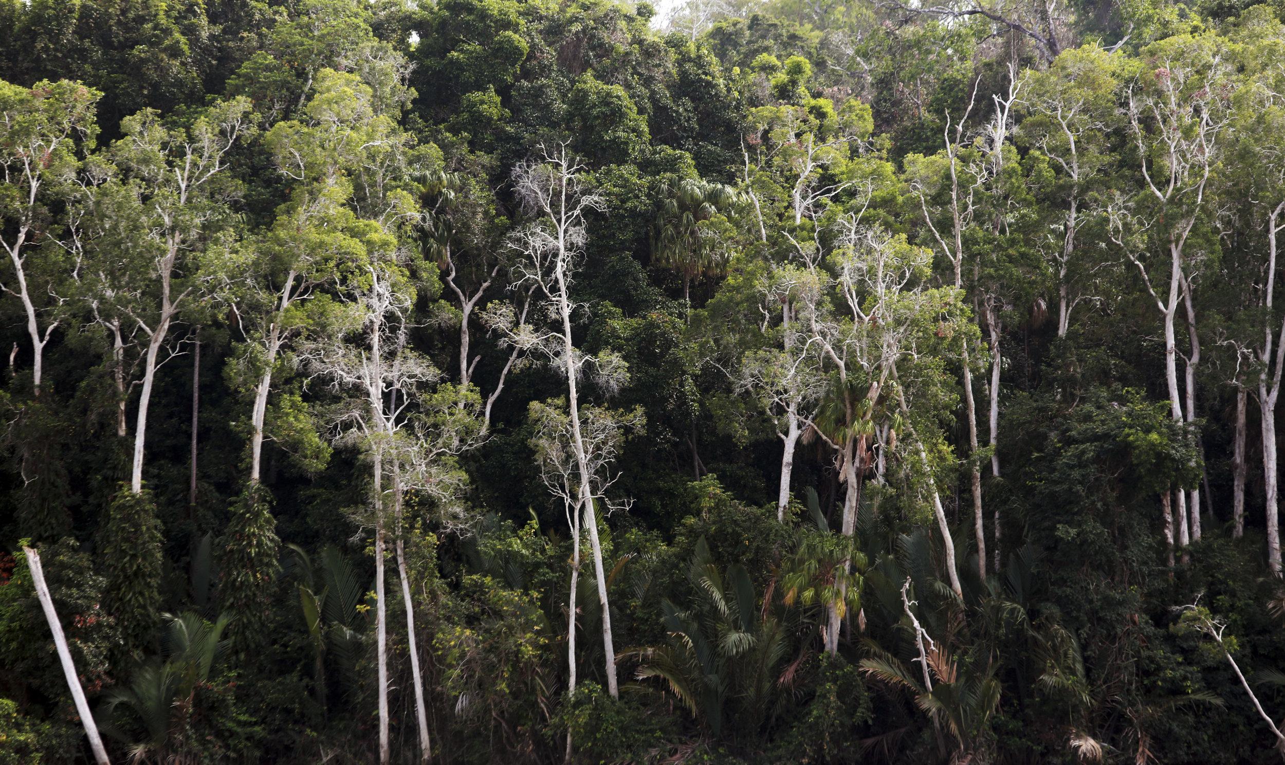 The Steve Irwin Wildlife Reserve. © Russell Shakespeare/Australia Zoo 2018