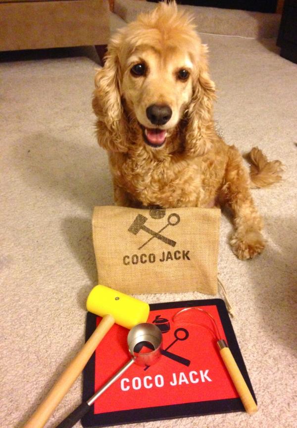 My little man, Duke, showing off  The Coco Jack bundle