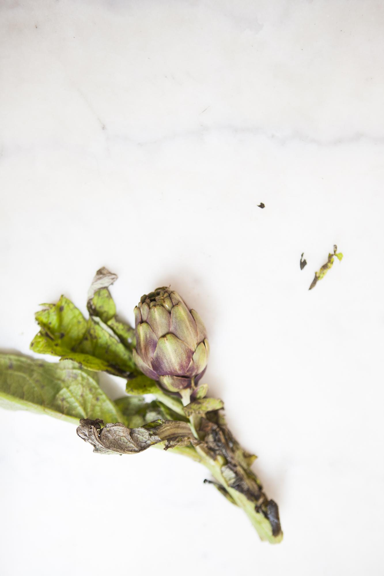 SaladeNicoise-2.jpg