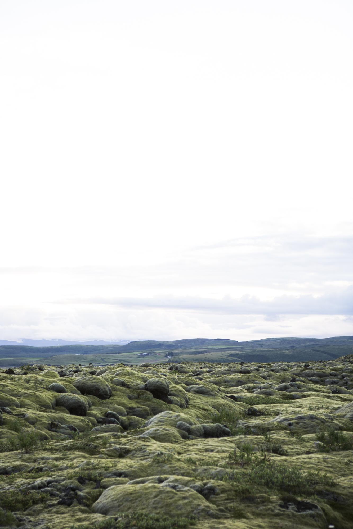 Iceland.CN-18.jpg