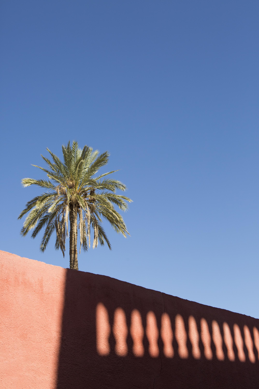 Marrakech-40.jpg
