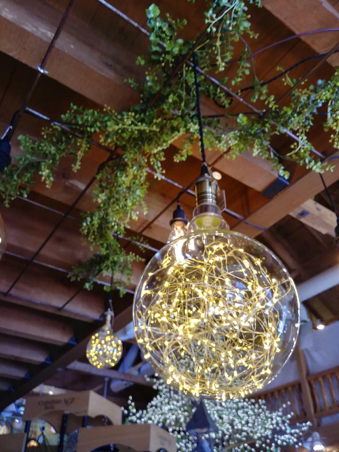 Fairy Light Bulbs.jpg