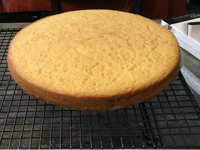 The Sponge Cake -