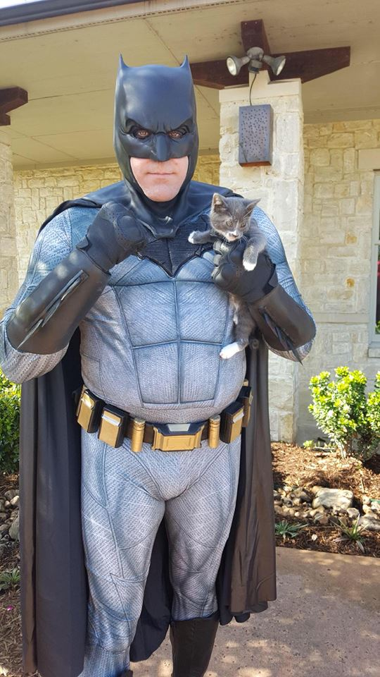 batman and cat.jpg