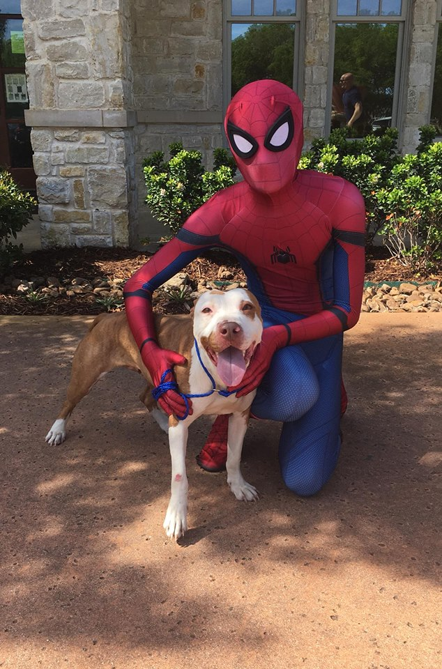 Spiderman and pit.jpg