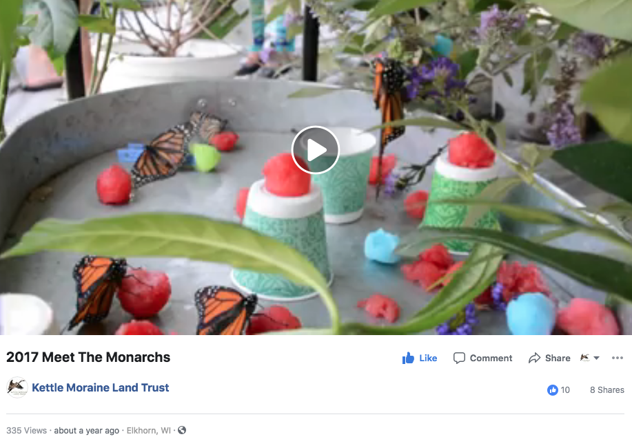 KMLT 2017 Meet The Monarchs.png