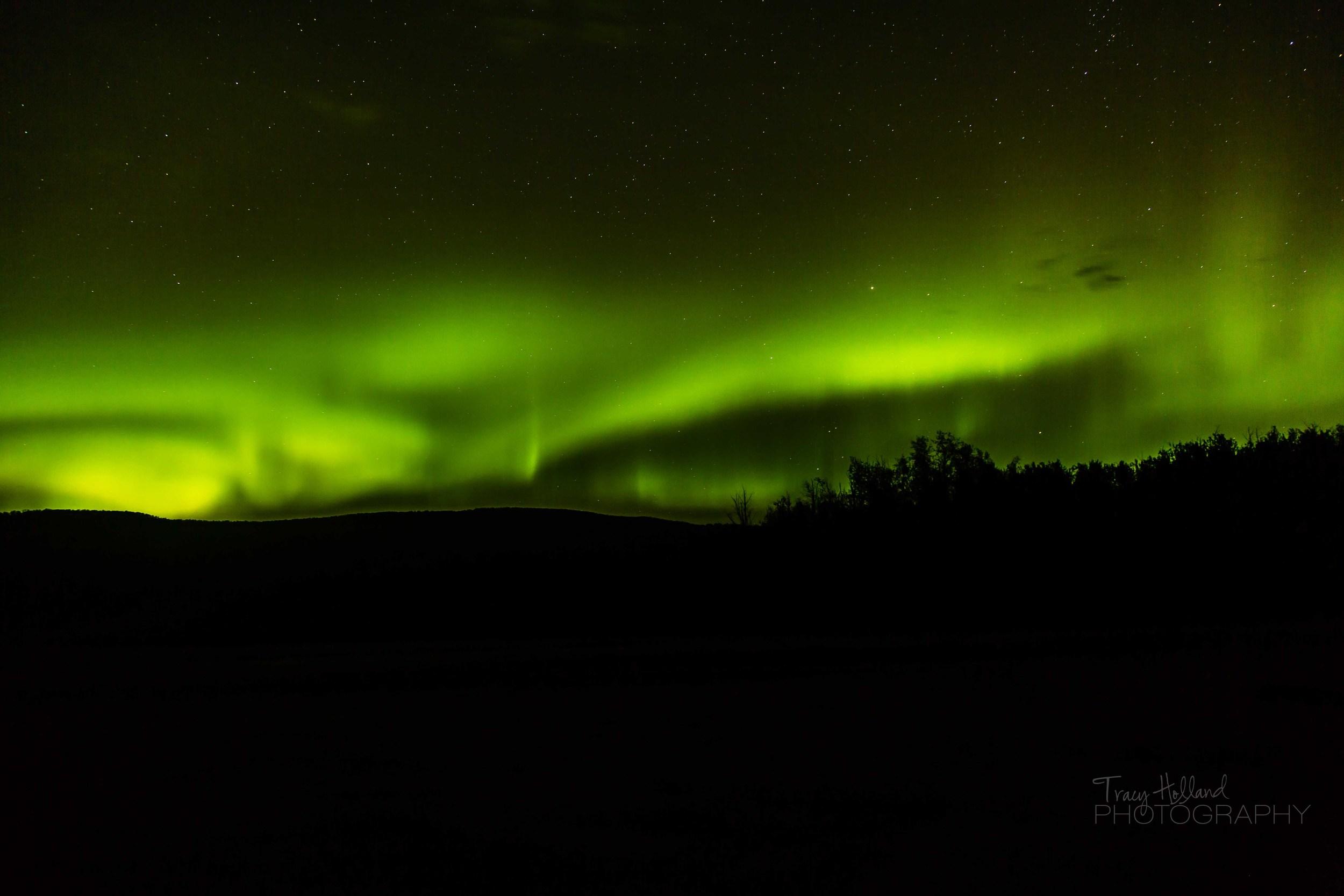 Aurora 082214-9381.jpg