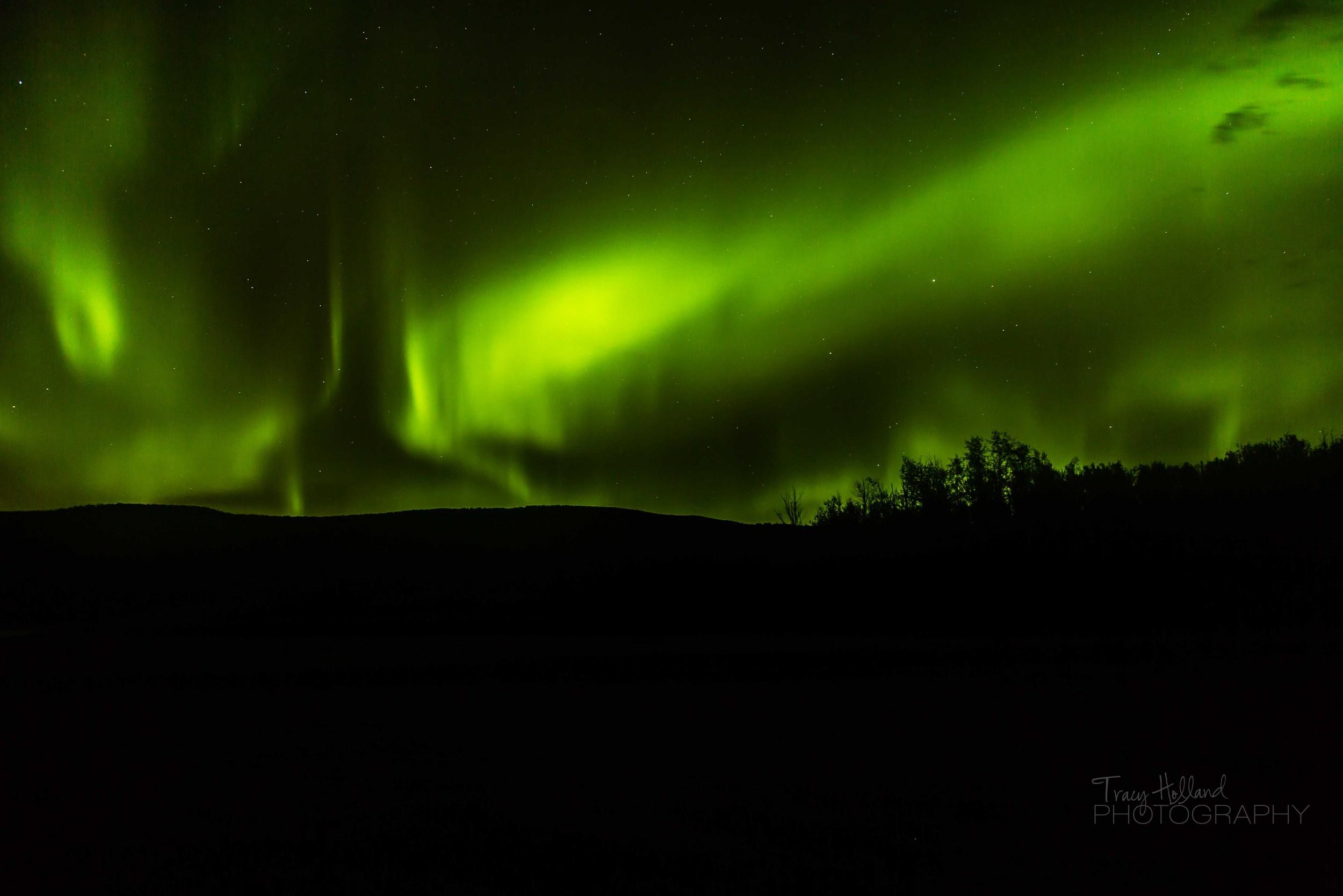 Aurora 082214-9385.jpg