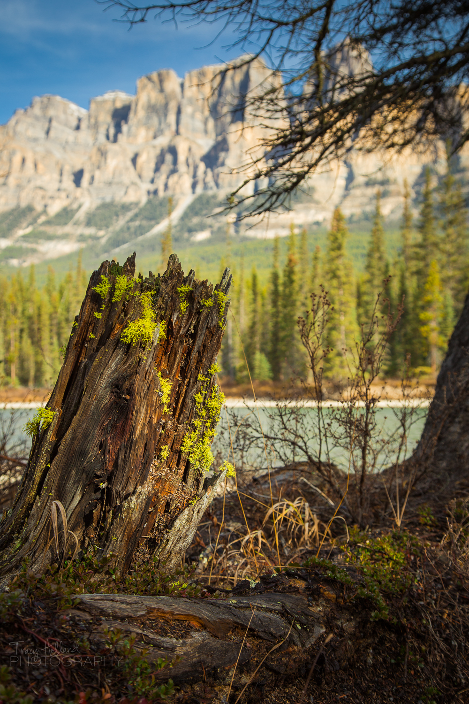 Banff Day 1-7.jpg