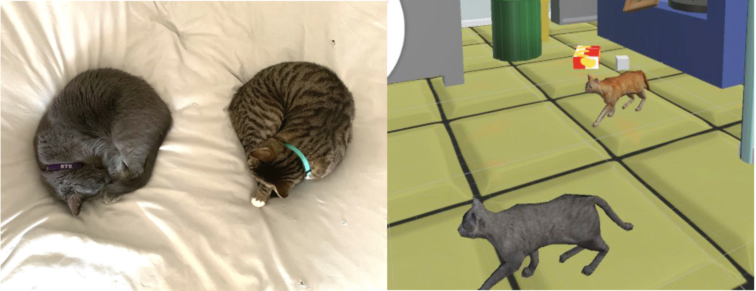 My Cats |  Purchased realistic 3D assets from Unity.