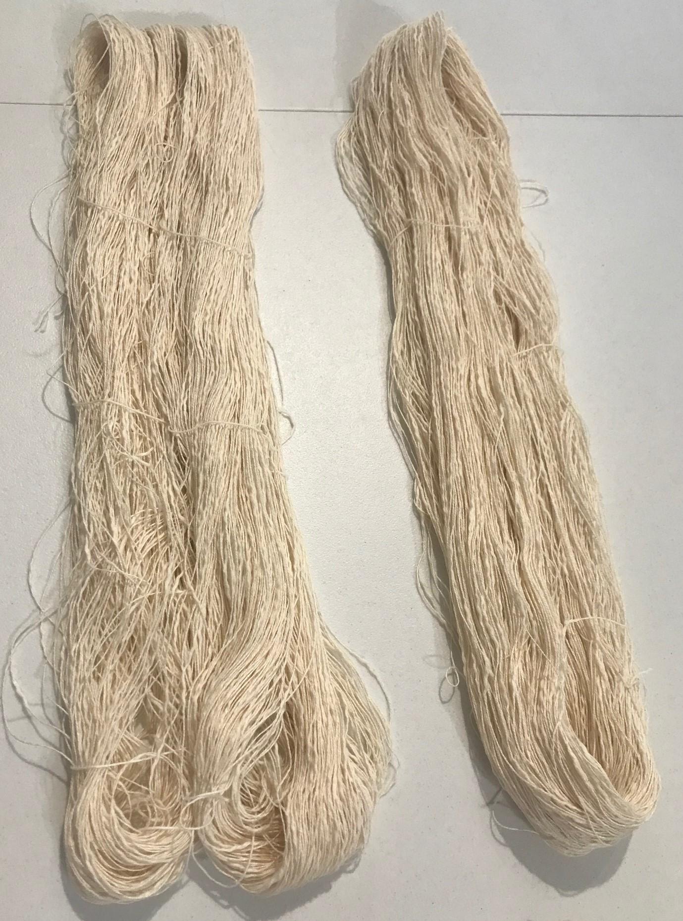 190816 Bengala dye 5.jpg