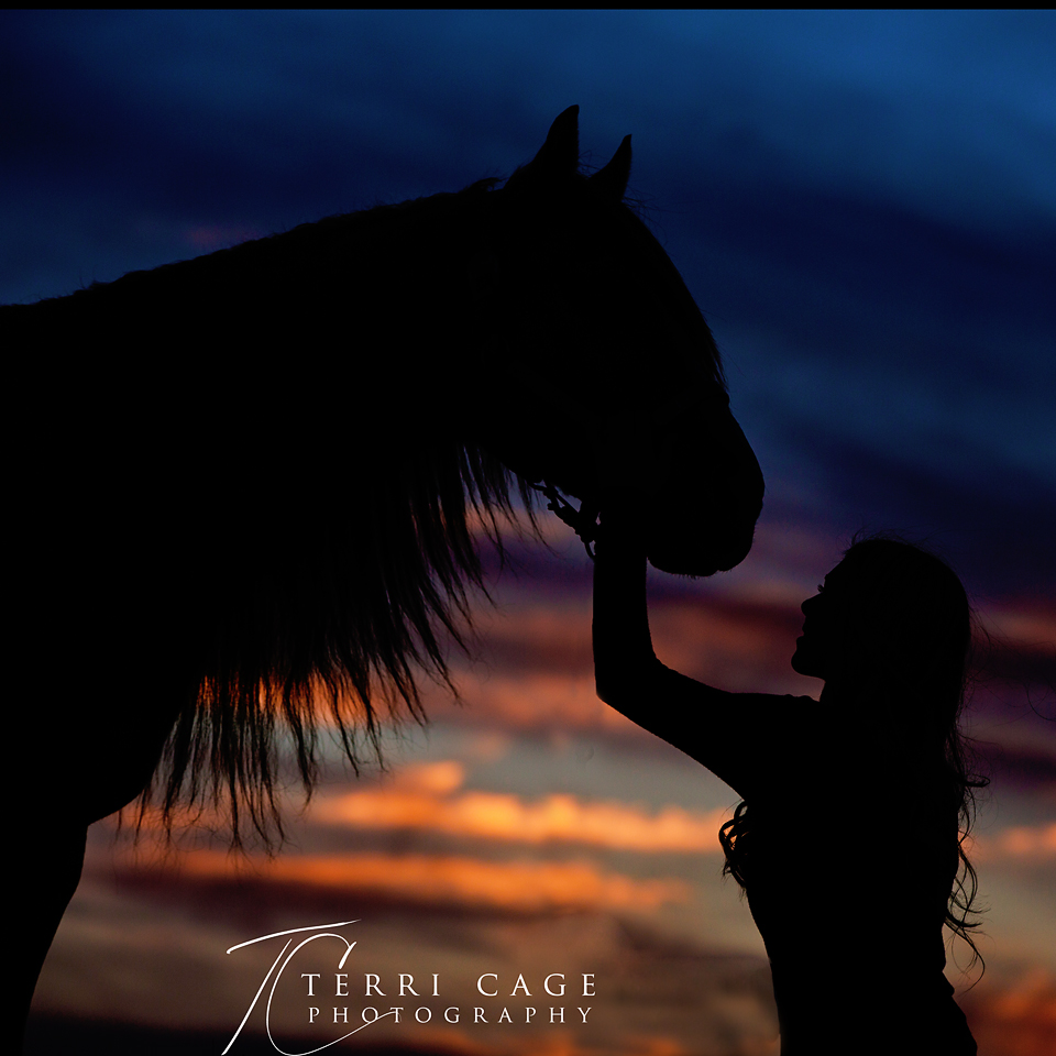 Senior with horse silhouette shot