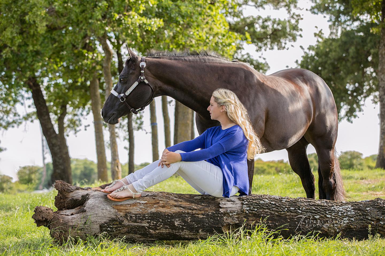 Horse - human bond, quarter horse, black horse