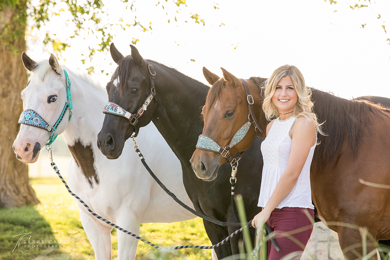 Senior portrait, senior photographer, north texas photographer, sanger, texas, barrel racer, golden hour, quarter horse, paint horse, AQHA, APHA, Medicine hat, tovero, rodeo