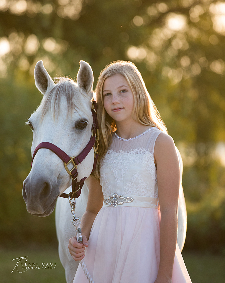 collin county, texas, equestrian