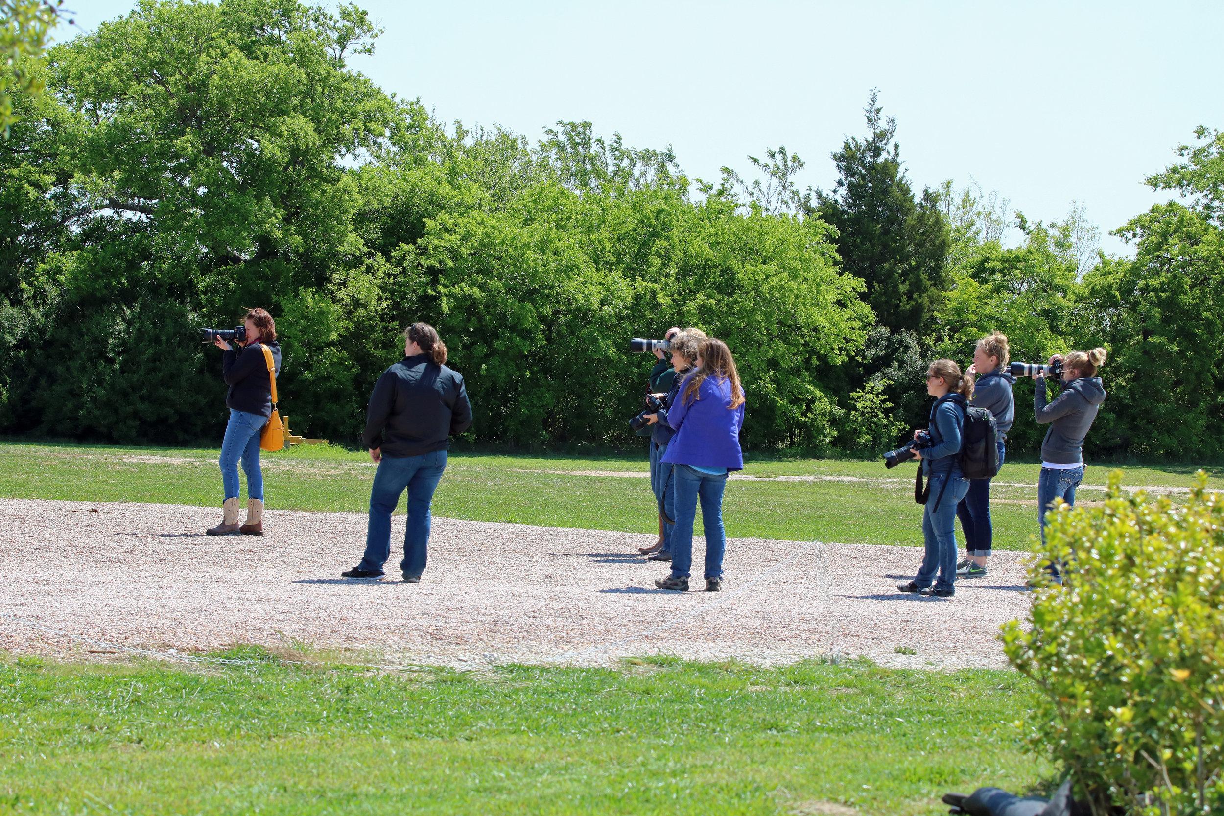 Group Photography Shooting