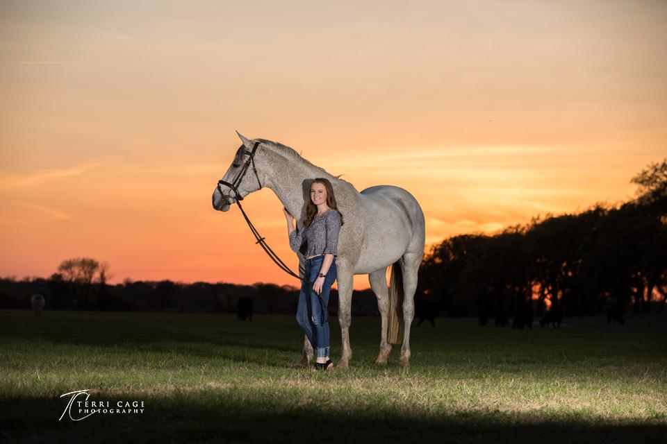 north texas equine photographer.jpg