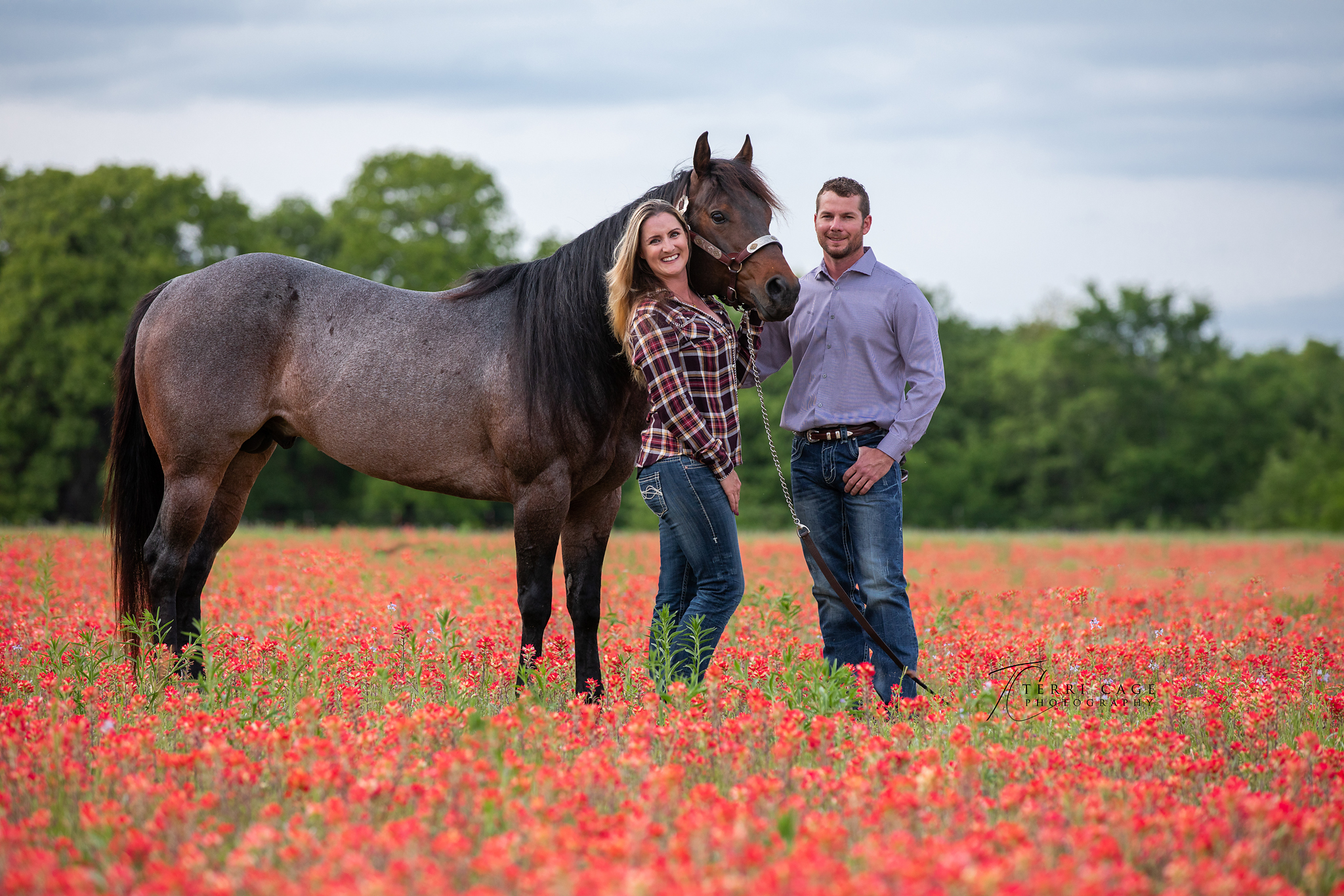 Stallion with his Owners