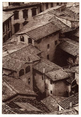 Rooftops-by C Dunn.jpg