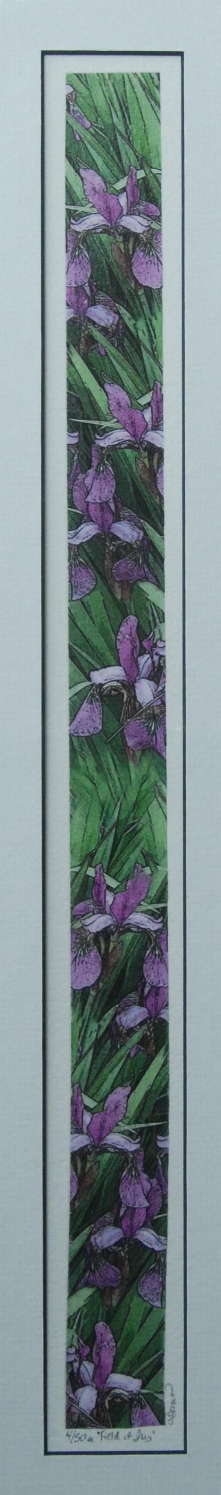 Field of Iris -Dunn-7x24-$200.jpg