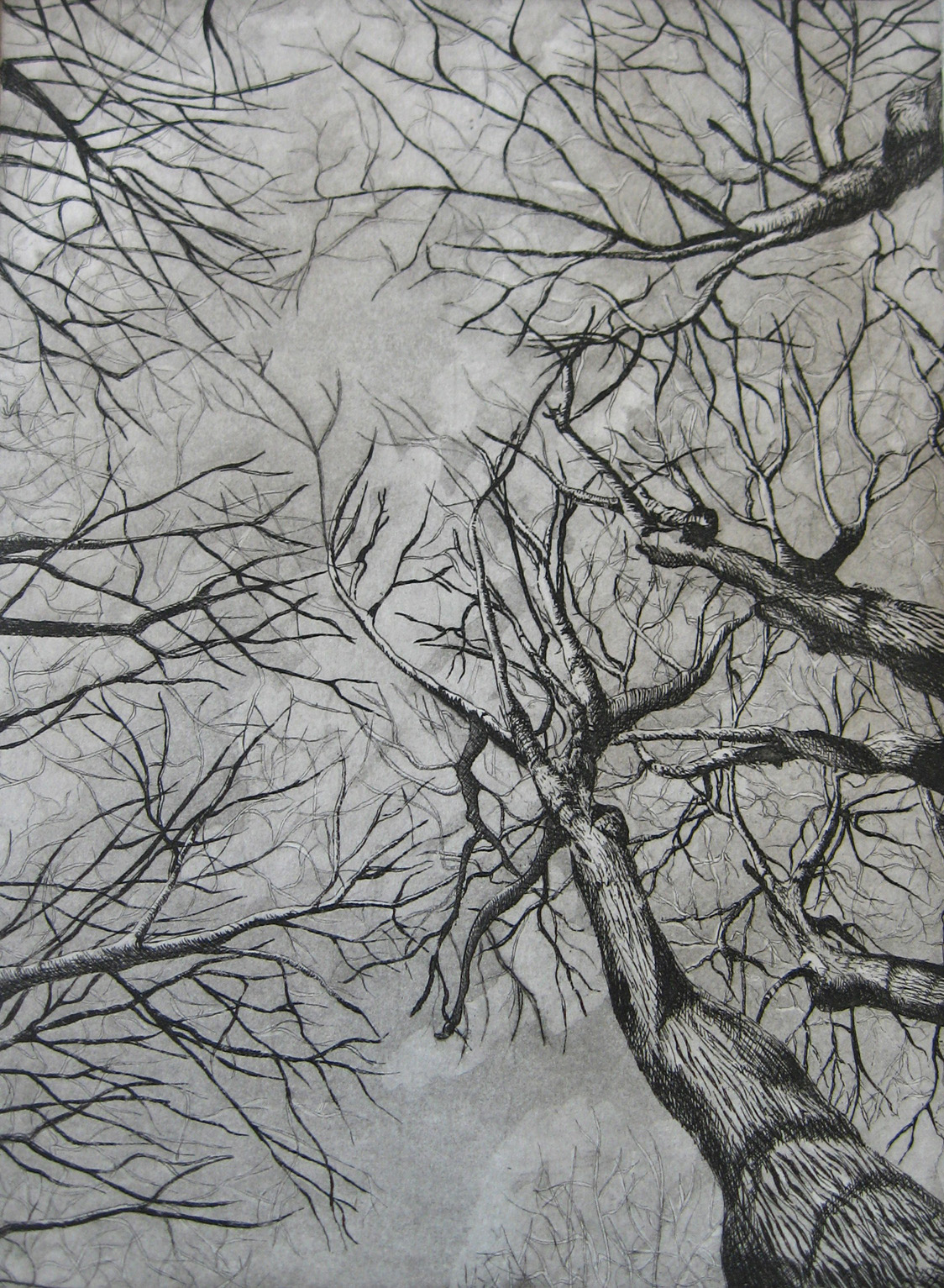 Taborda_View from Below_12x9_Etching Aquatint.jpg