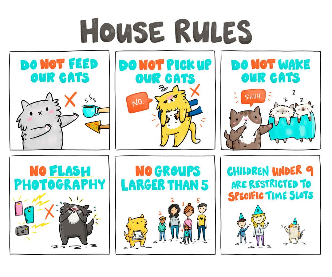 MeowParlour-HouseRules-LayoutOption-02.jpg