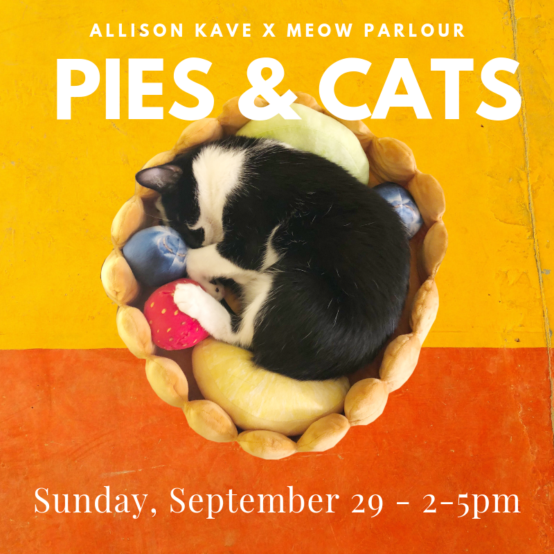 Pies & Cats - In this workshop at Macaron Parlour, Allison Kave, co-founder of Butter & Scotch and author of First Prize Pies, will walk students through every step of creating a pie from scratch, discussing various techniques and recipes, while providing hands-on instruction and guidance. Attendees will make all-butter pie dough by hand, learn rolling, crimping, and finishing techniques, and leave with their own homemade pie to share with lucky friends or family! While the pies are baking, students will get to spend an hour cuddling with adorable felines at Meow Parlour.For guests over the age of 9$130