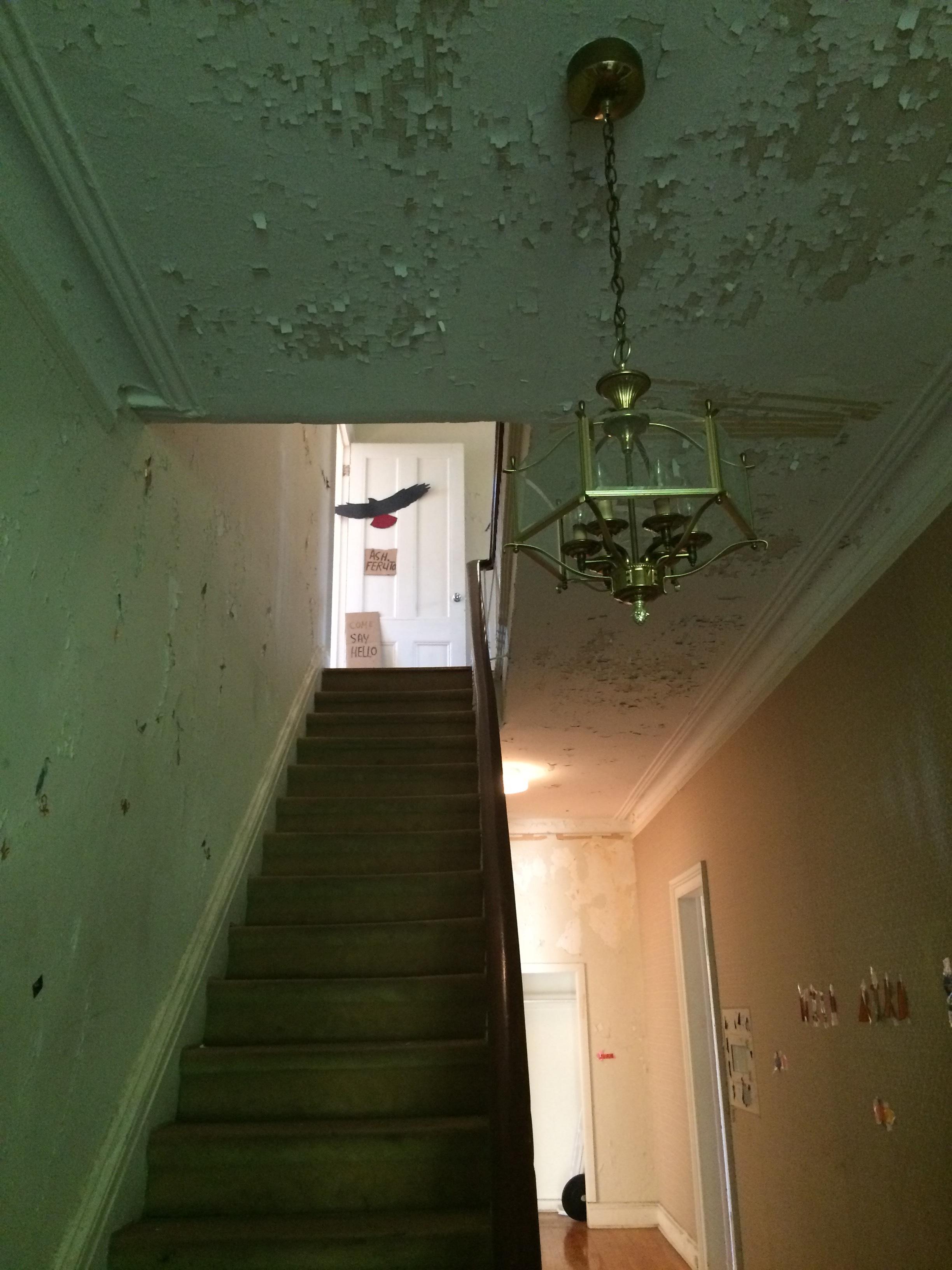Audobon chandelier with bird.JPG